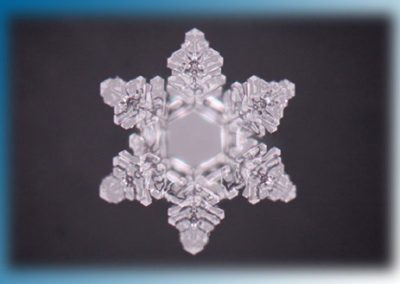 Wasser - Eis - Kristall bei 200 x facher Vergrößerung
